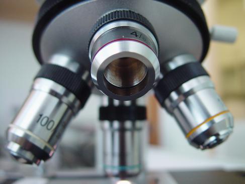 Choroby nerek - przyczyny, objawy, badania