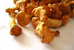 Przyprawy do grzybów