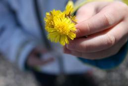 Wiosenne przesilenie - jak sobie radzić?