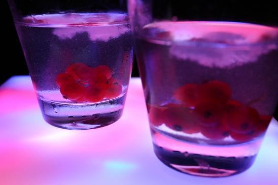 Drinki z wódką - przepisy