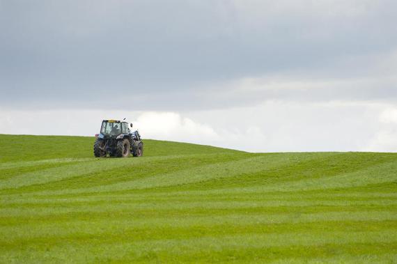 Rozliczanie PIT-36l dla rolników