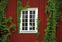 Jak zakonserwować drewniane okna?