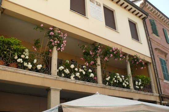 Kwiaty na balkonie - aranżacje
