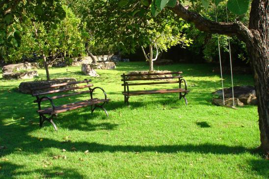 Jak pielęgnować trawnik na wiosnę?