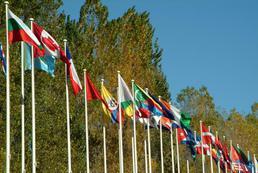 Czy polski dyplom jest ważny w krajach Unii Europejskiej?