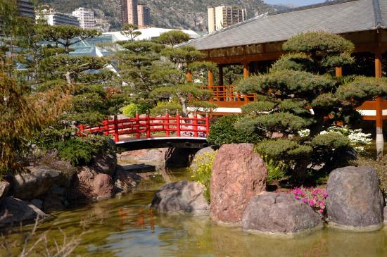 Jak zaprojektować ogród japoński?
