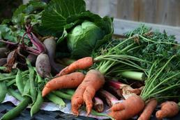 Jak zaplanować ogródek warzywny?