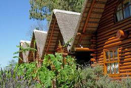 Jak ocieplić drewniany dom?