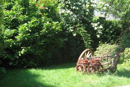 Jak założyć  trawnik z rolki?