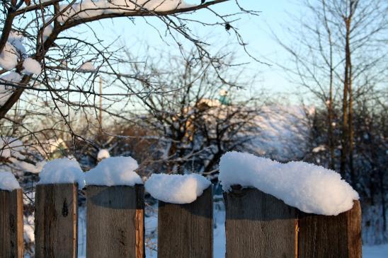Jak wykończyć ogrodzenie?
