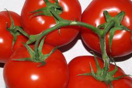 Pomidory faszerowane mięsem - przepisy