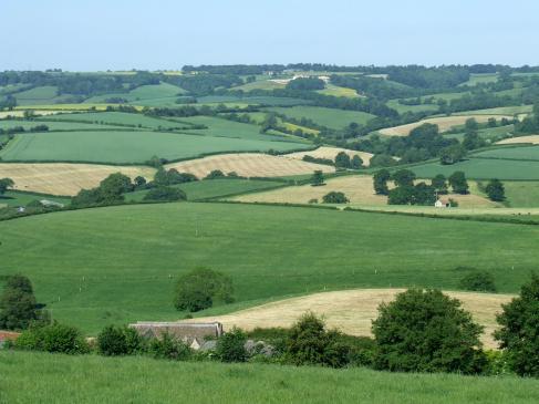 Jak przepisać gospodarstwo rolne?