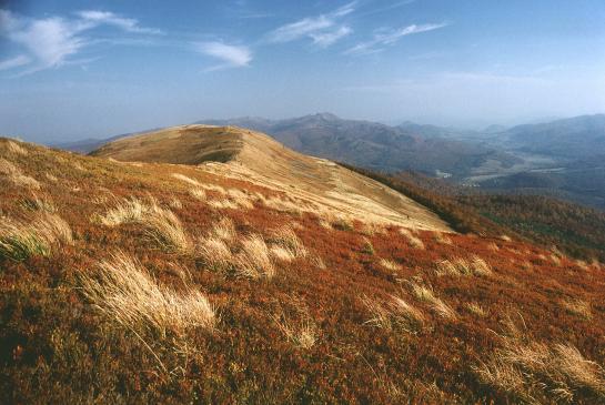 Dlaczego warto jeździć w Polskie góry?