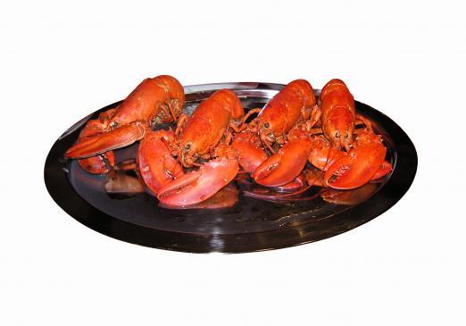 Jak jeść homara?