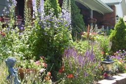 Jakie prace w ogrodzie w lipcu?
