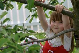 Ogród bezpieczny dla dzieci - na co zwrócić uwagę?