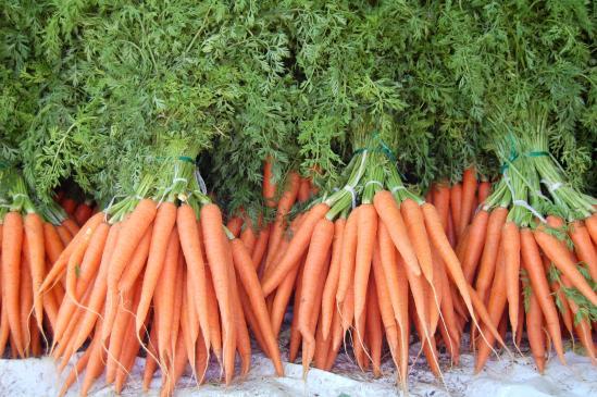 Jakie warzywa na nowalijki? Czy są zdrowe?