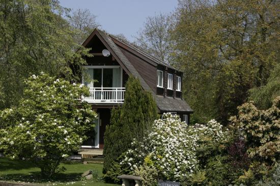Ogród angielski - cechy charakterystyczne, jak zaprojektować?