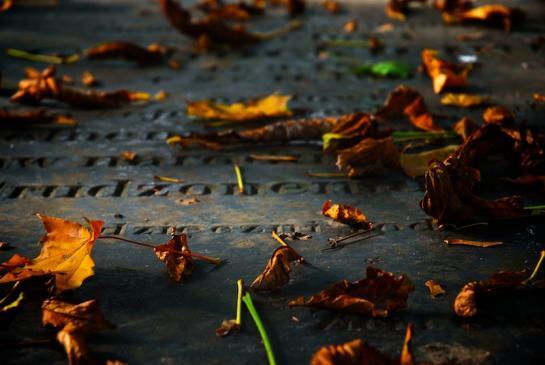 Poczucie winy po śmierci bliskiej osoby - jak sobie z nim radzić?