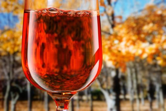 Jakie wino dobrać do potraw?