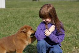 Jak nauczyć dzieci żyć ze zwierzętami w domu?