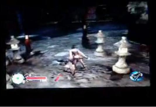 Tenchu Fatal Shadows - poradnik