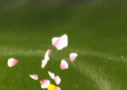 Flower - zasady gry