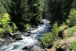 Dłubniański Park Krajobrazowy - atrakcje