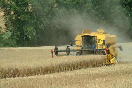 Jakie świadczenia przysługują rolnikom z ubezpieczenia emerytalno-rentowego?