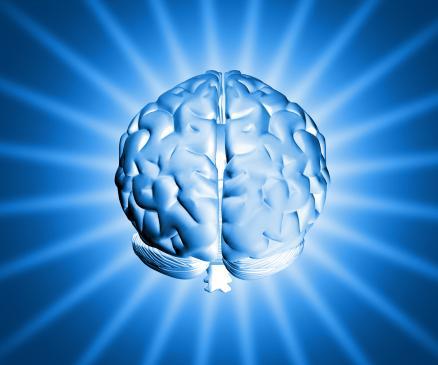 Funkcje półkul mózgowych i ich znaczenie dla uczenia się