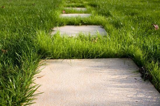 Jak zaprojektować ścieżki w ogrodzie?